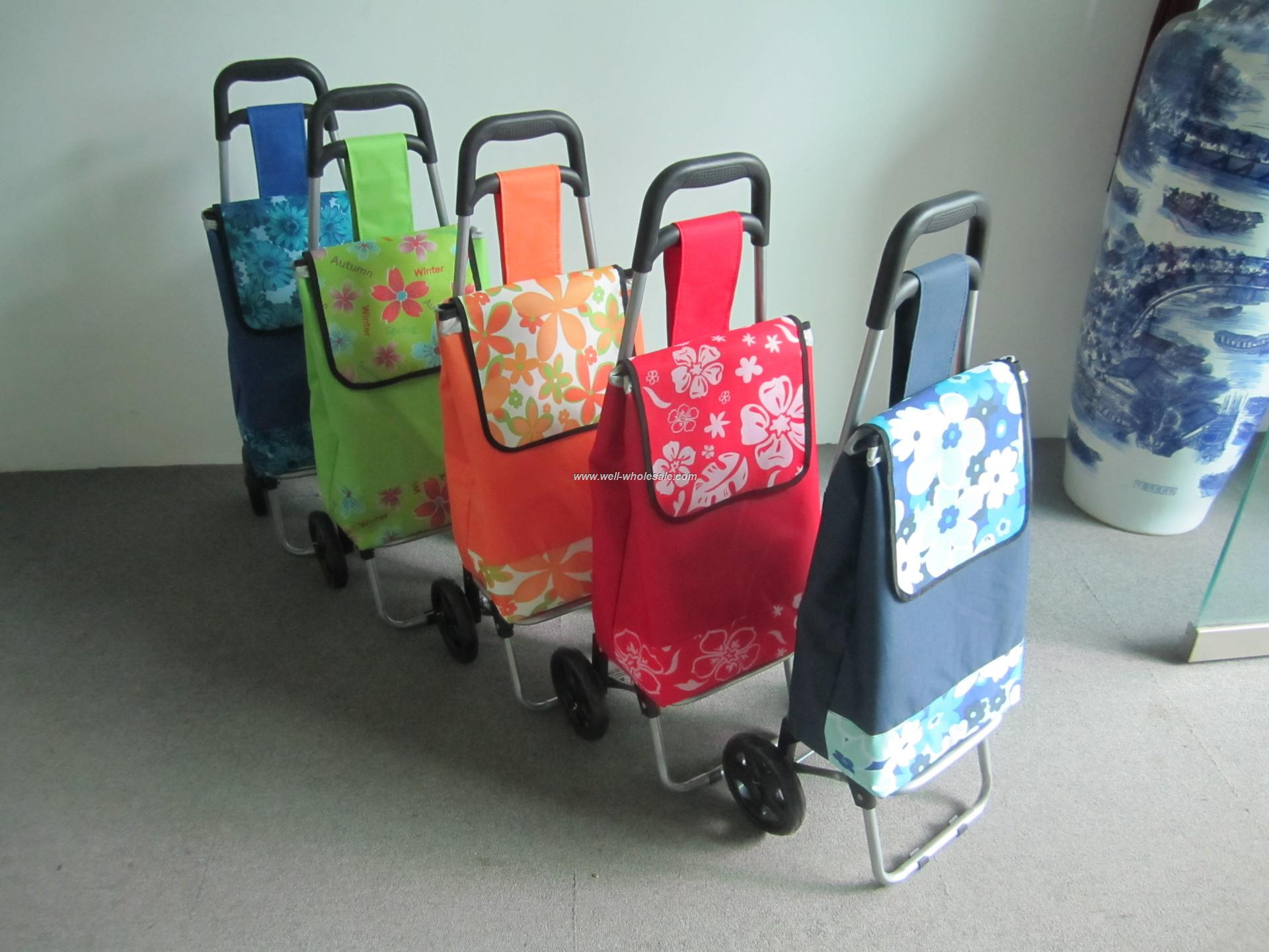 Mobile shopping trolley bag
