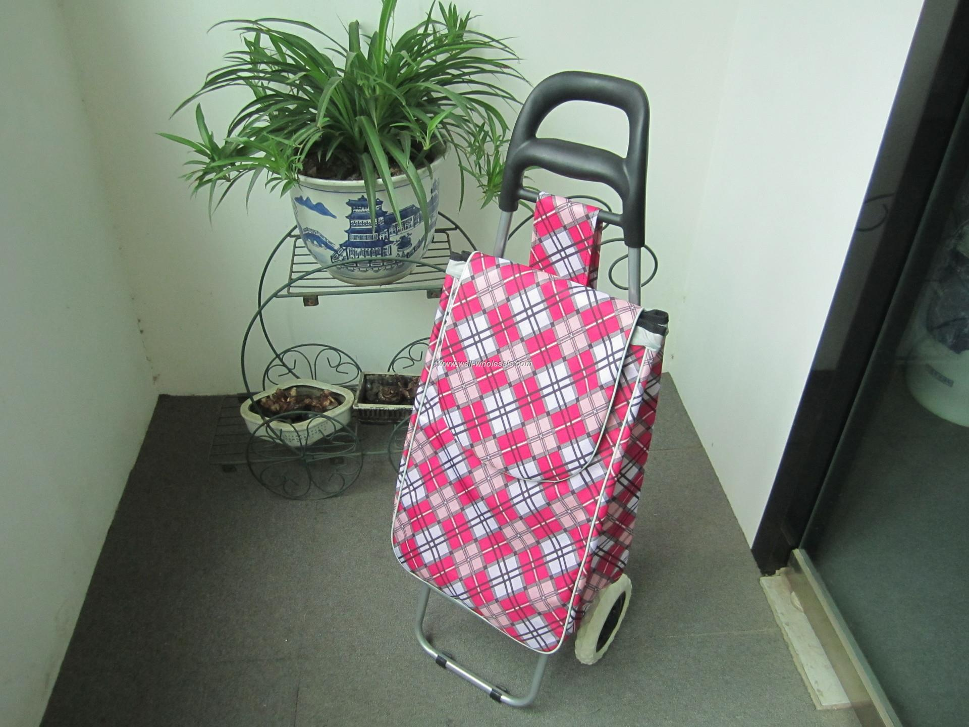 Shopping trolley bag, folding shopping trolley